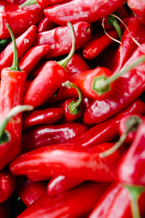 Dorset Commercial Photographer Chilli Festival 5