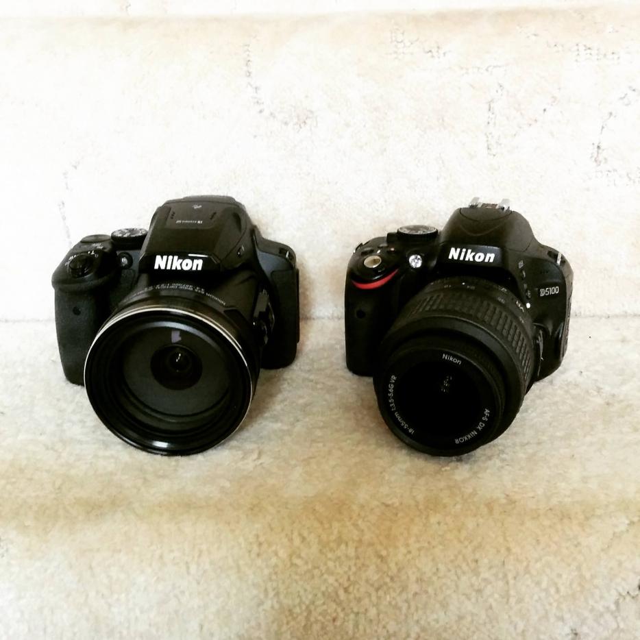 Nikon P900 v Nikon D5100